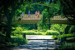 Pine Bank Bridge - Central Park (62nd street) (bwilliamp) Tags: nyc newyorkcity usa ny newyork centralpark manhattan bigapple pinebankbridge