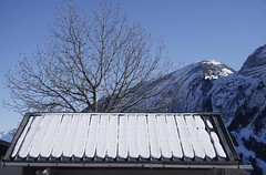 Lignes droites (straight lines) (Larch) Tags: november blue roof sky mountain snow france alps tree lines montagne alpes automne novembre ciel neige toit 74 arbre soe lignes hautesavoie autofocus straightlines thegalaxy simplysuperb lignesdroites mygearandme ringexcellence photographyforrecreation flickrstruereflection1 rememberthatmomentlevel1