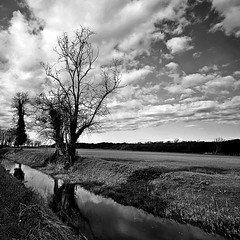 INVERNO (Claudia Gaiotto) Tags: trees winter sky water monochrome field clouds reflections river season inverno