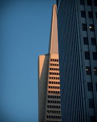 Morning Point (waxyleaves) Tags: sanfrancisco morning blue orange building skyscraper downtown pyramid transamerica pointed