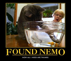 automotivator (14) (lys.dexic) Tags: black mine nemo fishbowl dummy demotivator captioned wigflip