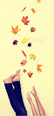 Off the edge (Prathima Pingali) Tags: autumn red orange leaves yellow hands legs off falling jeans edge conceptual