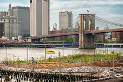 Brooklyn Bridge Park, view 02, Brooklyn, NY, USA (lumierefl) Tags: park newyorkcity bridge usa ny newyork building skyline architecture brooklyn skyscraper construction unitedstates manhattan eastriver northamerica northeast kingscounty