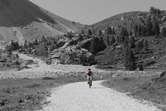 the cyclist (reflex_eye) Tags: blackandwhite italy bicycle trentino