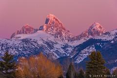 Purple Majesty (James Neeley) Tags: tetons grandtetons mountains driggs idaho westside sunset jamesneeley tetoncam