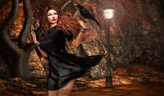 Tis the Wind and Nothing More... (Kacey Macbeths) Tags: exile catwa deaddollz raven secondlife women beautiful foxcity league wind saintpetecity