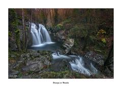 Fervenza de Narahío... (Canconio59) Tags: fervenza river río verde green forest water largaexposición coruña galicia españa spain