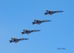 _33A4529-Blue-Angels-4-in-a-line (Carol Cohn) Tags: blueangels airshow formation navy aviators