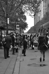 Why? (Smith-Bob) Tags: street ladies people bw woman men lady blackwhite women looking boots candid crowd tram melbourne busy queue goinghome pt publictransport blacknwhite commuters lookingback texting