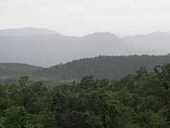 IMGPG15620 - Great Smoky Mountains National Park (David L. Black) Tags: nationalparks greatsmokymountainsnationalpark