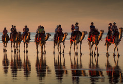 "Camel ride at sunset Broome • <a style=""font-size:0.8em;"" href=""http://www.flickr.com/photos/44919156@N00/9071653437/"" target=""_blank"">View on Flickr</a>"