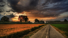 nature's road (rinogas) Tags: road sunset italy cloud piemonte cuneo roero sommarivadelbosco rinogas jesuscmsfavoritesgallery