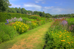 Walled Garden at Culzean Castle, Ayrshire (**Joannie of Arc**) Tags: flowers summer sky plants castle nature grass gardens clouds scotland colours lawn hedge greenery colourful bushes shrubs flowerbeds culzeancastle walledgardens