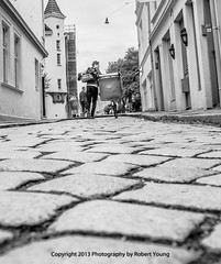 LeatherChair on a Bicycle-5234 (Photography By Robert Young) Tags: street leather bicycle norway chair nikon walks bergen cobbles d800 2470mm