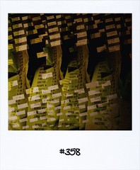 "#DailyPolaroid of 12-9-13 #358 • <a style=""font-size:0.8em;"" href=""http://www.flickr.com/photos/47939785@N05/9876685154/"" target=""_blank"">View on Flickr</a>"