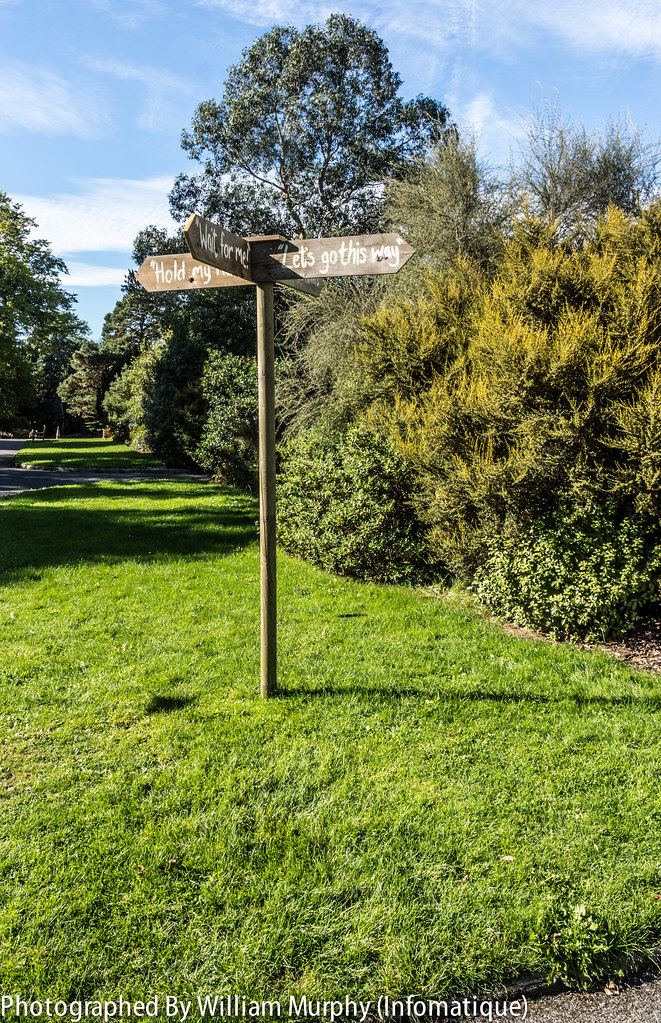 This Way Please By Eileen O'Sullivan - Sculpture In Context 2013 In The Botanic Gardens