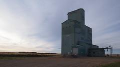 Niobe Alberta Grain Elevator (Wilson Hui) Tags: canada rural elevator grain alberta prairies grainelevator niobe westerncanada ruralalberta canadianprairies