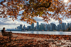 The Fall Of Vancouver (Clayton Perry Photoworks) Tags: autumn trees fall leaves skyline vancouver stanleypark