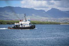 Tugboat (Photo Patty) Tags: hawaii pearlharbor tugboat
