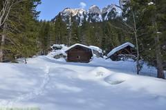 Lauenen, dans l'Oberland bernois (CH) (Annelise LE BIAN) Tags: montagne suisse vert bleu neige blanc paysages chalets lauenen