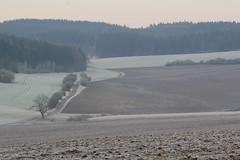 (:Linda:) Tags: morning germany landscape village hoarfrost thuringia soil veilsdorf leite rauhreif eichigt