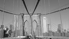 Bridge view of Manhattan Skyline (scotty NEX harper) Tags: new york city bridge skyline brooklyn skyscraper towers manhatten onthebridge newyorknov2010