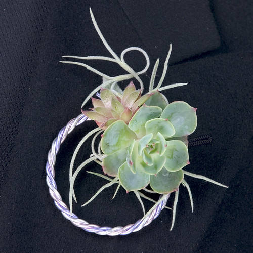 Succulent Boutonniere  - Leanne and David Kesler, Floral Design Institute, Inc., in Portland, Ore.