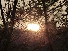 Today's sunrise (april-mo) Tags: sun france sunrise contrejour nord todayssunrise