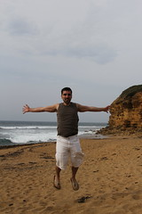 meltodar_345 (daniel_dimarco) Tags: trip vacation landscapes hostel australia melbourne victoria kangaroo koala wallaby emu greatoceanroad twelveapostles bellsbeach gadventures