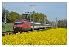 Re 460 052-4 - Saint-Prex (CC72080) Tags: train sbb locomotive cff re460 saintprex interrégio