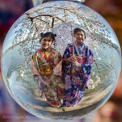 Crystal Ball Cherry Blossoms3-37 (KLMP) Tags: usa monument festival ball cherry dc washington memorial crystal blossom tourists basin national jefferson karin tidal markert