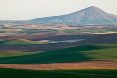 Steptoe Butte in Spring (Eli Nelson) Tags: morning green canon eos rebel is spring butte shadows hill farming sunny hills fields growing ef 70200mm steptoe f4l t1i