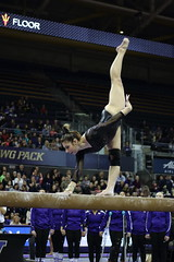 2017-02-11 UW vs ASU 83 (Susie Boyland) Tags: gymnastics uw huskies washington