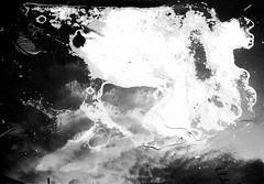 meteogrammi_002 (www.luigiredavide.com) Tags: meteogrammi ricerca materiali stampa fotografia biancoenero agentiatmosferici natura terra vento pioggia sole neve umidità rugiada nebbia polvere search materials printing photography blackandwhite weathering nature land wind rain sun snow humidity dew fog dust