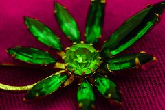 A nugget of purest green (iii) (stevethesnapper) Tags: color graphic vibrant leaf february space botany clip plant 2017 hss k200d backdrop precious design pentax light organic accessory metal pentaxk200d gold flora jewlery gift fun flower fastener jewelry drop decoration brooch basil pattern luxury leaves foliage colorful closeup club bright digital environment freshness colors green fresh pin macro detail