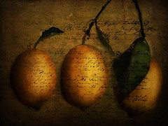 A Tale of Three Lemons (jimlaskowicz) Tags: netartll painterly typography light dream textures artistic oldeworld turkish fairytale olde lemons tale