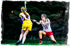 29 LAX 403475.jpg (stillwaterjd) Tags: girls sports minnesota sport action hastings lax stillwater lacrosse mn 2013 stillwaterjd