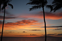 *sigh* (d_rimbo) Tags: ocean trip travel family sunset sky orange cloud yellow hawaii dusk maui kihei plamtree treeblue