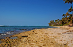 Beyond Black Point (jcc55883) Tags: ocean beach hawaii nikon day oahu horizon shoreline bluesky clear pacificocean shore blackpoint kahala yabbadabbadoo d40 kaalawaibeach nikond40 diamondheadroad kahalaavenue kulamanuplace
