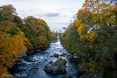 Water of Feugh (GordonW73) Tags: trees water river scotland stream aberdeenshire salmon aberdeen banchory feugh wateroffeugh
