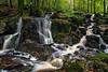 Lowran Burn Waterfalls (.Brian Kerr Photography.) Tags: scotland waterfalls dumfriesandgalloway lochken castledouglas briankerrphotography lowranburn dglife dgwo