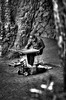 street musician (jacobo_gonzalez_castrodeza) Tags: barcelona blackandwhite bw blancoynegro contrast 50mm nikon bcn contraste catalunya soe jacobo autofocus d40 flickrestrellas spiritofphotography nikonflickraward ringexcellence blinkagain rememberthatmoment rememberthatmomentlevel1