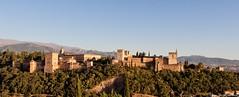 Granada (danizamo) Tags: españa canon andalucía pano alhambra granada panorámica 500d
