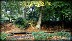 Somewhere to Sit (pixmad) Tags: autumn trees home leaves bench reading october colours peaceful southport theworldwelivein 2013 heskethpark canoneos550d blinkagain