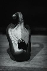 Demonic (ReanimatedImagery) Tags: blackandwhite pepper photography nikon teeth horn weston d7000