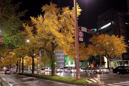 Sakura-Dori Hijiecho, Nagono 1, Nagoya