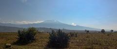 Kilimandjaro - Jour 2 - Big Tree Camp - 031