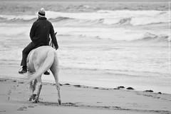 Horse Rider II (Ulfr Brgen Roderiksson Photography) Tags: sea horse beach caballo mar playa