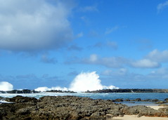 Shark's Cove (zodia81) Tags: hawaii oahu northshore bigwaves sharkscove sharkscovebigwaves