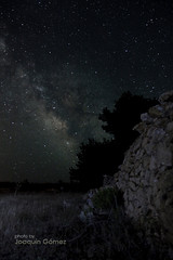 The night beside stone wall (Oddiseis) Tags: longexposure sky tree silhouette pine night stars spain nightscape nocturnal stonewall formentera milkyway balearicislands lamola
